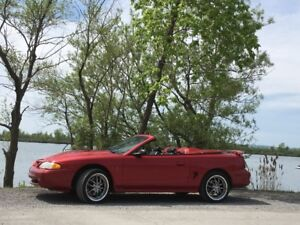 COBRA SVT 1998 décapotable $9,900