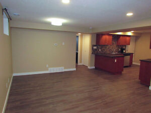 Beautiful 2 Bdrm Bsmt Suite in Great Area
