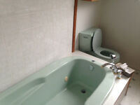 Retro Mint Green Toilet, Spa Tub and Sink