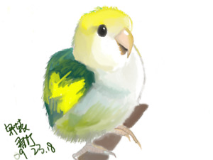 Paint for your bird