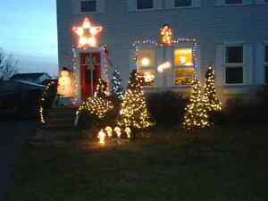 Free holiday/special event lighting or window painting quote Kingston Kingston Area image 6