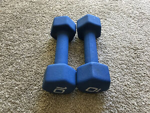 Two 10Lbs Dumbbells