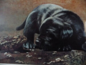 "Hand Signed, Titled by Listed Artist Tammy Laye ""Pup And Toad"" Stratford Kitchener Area image 3"