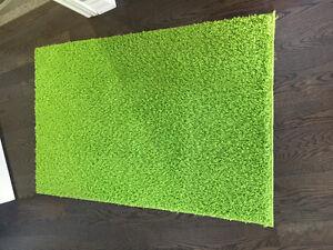 Green 10x6 small area carpet