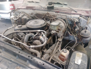1984 Chevy c/10 project