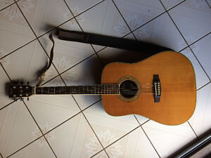 *Cort Earth Series with fishman pickup Guitar* + CASE