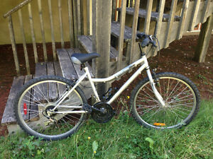 Bike for $150 (Size: 45cm/ 18 inches)