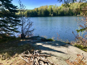 Southern  Exposure - 330' of Waterfront: 3 acres White Duck Lake