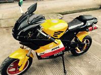 2015 Venom 110cc Super Pocket Bike x19 x22 Mini Bike 4 stroke
