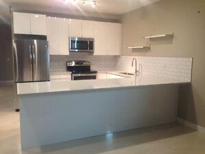 1350 sqft bsmt apartment in Glenbrook SW - all in price - June 1