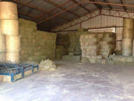 CHEAP HAY FOR SALE!!!! Gatton Lockyer Valley Preview