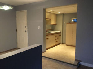 One bedroom basement suite - shared cooking
