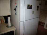 17 cubic ft  Fridgaire frost free fridge 3 years old