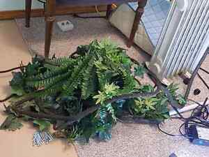 Reptile artificial plants and vines  Strathcona County Edmonton Area image 1