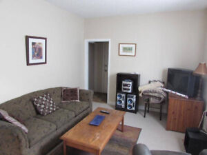 May 1st-Furn. 1 bdrm in Central Area (incls. cable and internet)