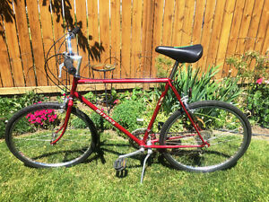 "Vintage Miata Road Bike 22.5"" Frame"