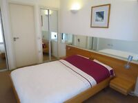 Ensuite Double Room Available (Mon-Fri only) with Balcony in Superb Flat + Pool, Sauna, Steam & Gym