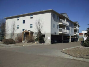 June 1! - Modern Newer Central 2 bedroom 2 bathroom condo