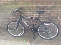 Bicycles x 2 excellent condition