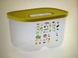 NEW Tupperware Fridgesmart Deep Small Container