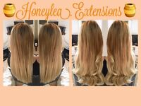 Honeylea.Extensions