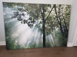 Large Ikea Picture Framed - Trees