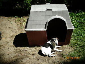 Heavy duty plastic dog house for sale
