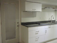 All New Downtown Apartment (lower level bachelor) with Parking