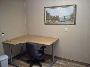2 bed Basement Suite For Rent in Boyle Edmonton Edmonton Area image 3