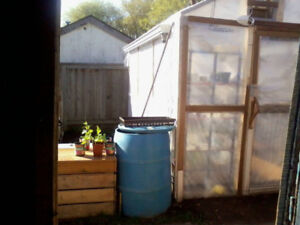 Homemade green house 11L x 8W x 9H Lots of space to grow!!