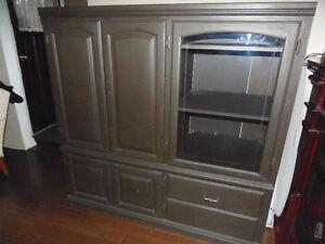 Entertainment Unit Storage Cabinet