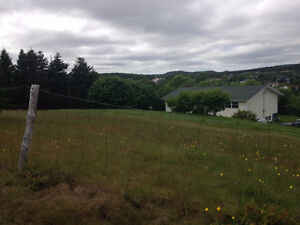 Land for Sale in the Heart of Brigus!!!! St. John's Newfoundland image 6