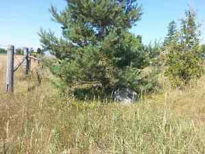 One Acre Level Building Lot for Sale