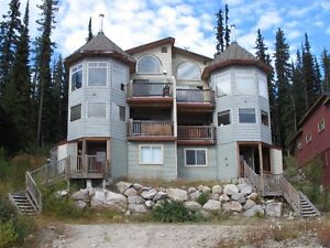 2 Bedroom, 2 Bath furnished for rent in Big White for Summer