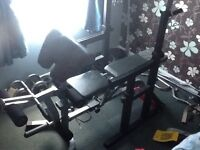Olympic weight bench squat rack and 135kg weights