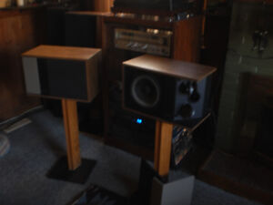 Bose 301's with stands