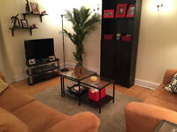 Beautiful Apartment for Rent (August 30th 2015 - August 2016)