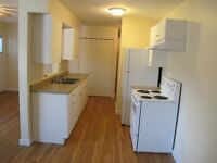 1 Bedroom lower half duplex for rent $875/mo Available Aug. 1st