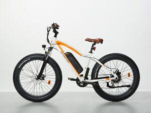 2018Rad Power Electric Bike Like New Very Powerful  416 824 6317