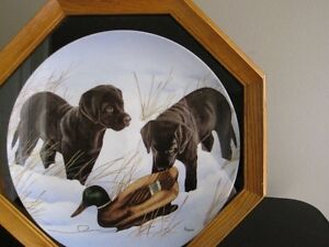 Ducks Unlimited Frame Plate