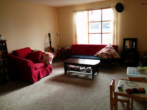 Roommate wanted, spacious 2 Bedroom, east city with great view