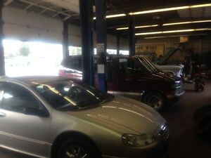 Well Established Business opportunity in Thunder Bay Peterborough Peterborough Area image 4