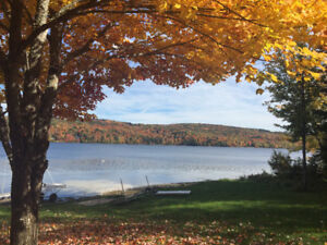 Waterfront on the Mactaquac Headpond