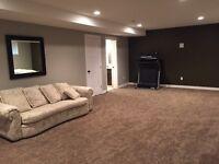 Brand new developed basement