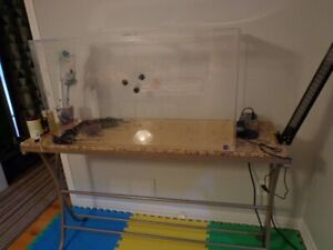 50 gal. ACRYLIC - TANK  For Your  Reptiles & Amphibians