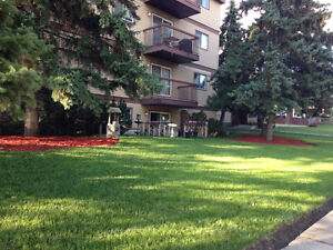 Nice renovated one bedroom near whitened and 66 st  Millwoods