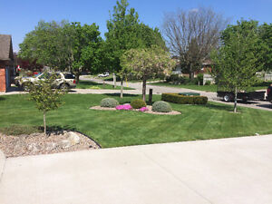 "GRASSMASTER  LAWN ROLLING  "" WE CUT LAWNS, NOT CORNERS """