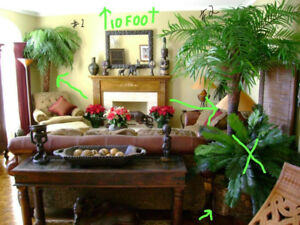 8-9 feet tall decorative (silk) palm trees with real trunk (3)