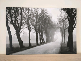IKEA Black and White Country Lane Canvas - Never been hung