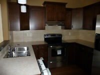 1/2 Duplex for Rent August 1 Great Location